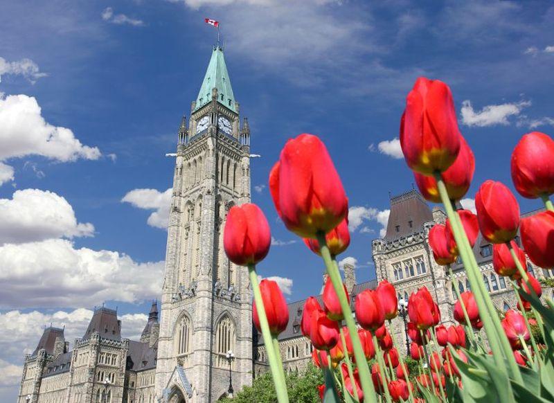 Parlement en printemps