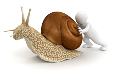 The slow movement is about more than doing things at a snail's pace